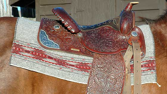 saddle blanket in use